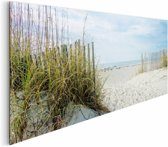 REINDERS Duinen en strand - Schilderij - 156x52cm