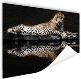 Luipaard bij het water Poster 180x120 cm - Foto print op Poster (wanddecoratie) / Dieren Poster XXL / Groot formaat!