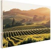 Wijngaarden in de Verenigde Staten Hout 120x80 cm - Foto print op Hout (Wanddecoratie)