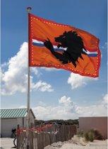Mega oranje stadion vlag 300x200 cm