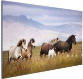 Paarden in de bergen Aluminium 60x40 cm - Foto print op Aluminium (metaal wanddecoratie)