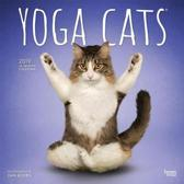 Yoga Cats - Joga-Katzen 2019 - 18-Monatskalender