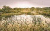 Komar Morning View II Vlies Fotobehang 400x250cm 4-banen
