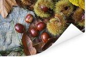 Zoete tamme kastanjes liggend op de herfstgrond Poster 60x40 cm - Foto print op Poster (wanddecoratie woonkamer / slaapkamer)