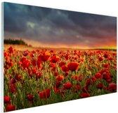 Klaprozen veld bij zonsondergang Glas 120x80 cm - Foto print op Glas (Plexiglas wanddecoratie)
