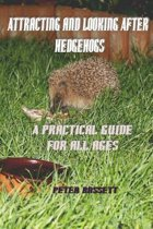 Attracting & Looking After Hedgehogs b&w