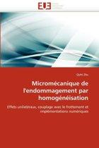 Microm�canique de l''endommagement Par Homog�n�isation