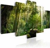 Schilderij De schoonheid van het bos, groen, 5luik, 2 maten