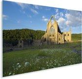 Kleurrijke bloemen bij de Tintern Abbey in Wales Plexiglas 90x60 cm - Foto print op Glas (Plexiglas wanddecoratie)