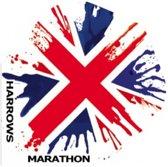 Harrows Darts Flight 1545 Marathon Union Jack 3 Stuks