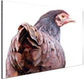 Achteraanzicht kip Aluminium 60x40 cm - Foto print op Aluminium (metaal wanddecoratie)