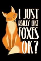 I Just Really Like Foxes Ok
