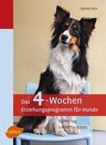 Das 4-Wochen Erziehungsprogramm für Hunde
