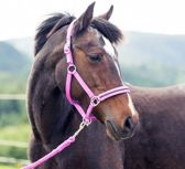 Horze Pony Halster strass - pony