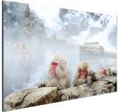 Badderende sneeuwapen Aluminium 30x20 cm - klein - Foto print op Aluminium (metaal wanddecoratie)
