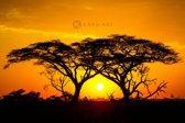 Schilderij - Zonsondergang in Afrika