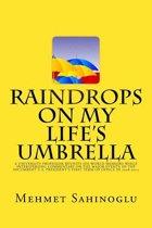 Raindrops on My Life's Umbrella
