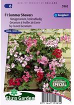 Sluis Garden - Hanggeranium F1 Summer Showers (Pelargonium)