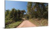 Een weg door het nationaal park Calilegua in Amerika Aluminium 40x20 cm - Foto print op Aluminium (metaal wanddecoratie)