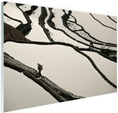 FotoCadeau.nl - Chinese rijstvelden zwart-wit Glas 180x120 cm - Foto print op Glas (Plexiglas wanddecoratie)
