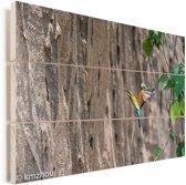Blauwwangbijeneter is aan het vliegen Vurenhout met planken 90x60 cm - Foto print op Hout (Wanddecoratie)