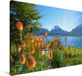 Kleurrijke bloemen voor het landschap van het Nationaal park Nahuel Huapi in Argentinië Canvas 140x90 cm - Foto print op Canvas schilderij (Wanddecoratie woonkamer / slaapkamer)
