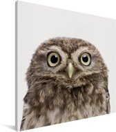 Uilskuiken - Portret dierenprint kinderkamer Canvas 50x50 cm - Foto print op Canvas schilderij (Wanddecoratie woonkamer / slaapkamer)