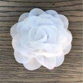 Leuke bloem (roos) op Clip - Wit