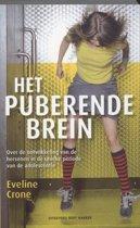 Het puberende brein