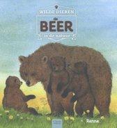 Wilde dieren in de natuur - De beer