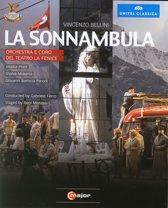 La Sonnambula, Venetie 2012, Br