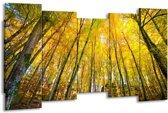 Canvas schilderij Bomen | Geel, Groen | 150x80cm 5Luik