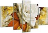 Glasschilderij Roos   Wit, Bruin, Geel   170x100cm 5Luik   Foto print op Glas    F003170