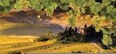 Fotobehang Natuur | Geel, Groen | 416x254
