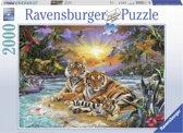 Ravensburger puzzel Tijgerfamilie bij zonsondergang - Legpuzzel - 2000 stukjes