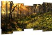 Canvas schilderij Natuur   Geel, Groen   150x80cm 5Luik