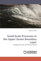 Small-Scale Processes in the Upper Ocean Boundary Layer