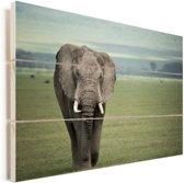 Afrikaanse olifant op de savanne van de Ngorongoro krater in Tanzania Vurenhout met planken 60x40 cm - Foto print op Hout (Wanddecoratie)
