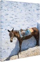 Ezel in Santorini Canvas 60x80 cm - Foto print op Canvas schilderij (Wanddecoratie)
