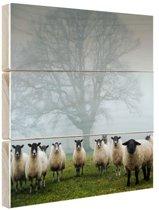 Kudde in de mist Hout 50x50 cm - Foto print op Hout (Wanddecoratie)