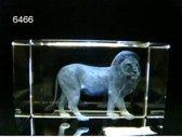 Glasblokje leeuw