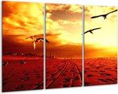 Canvas schilderij Vogels | Rood, Geel, Wit | 120x80cm 3Luik