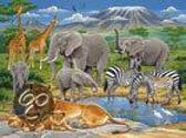 Dieren in Afrika