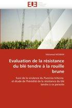 Evaluation de la R�sistance Du Bl� Tendre � La Rouille Brune