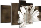 Glas schilderij Bloem | Sepia | 170x100cm 5Luik | Foto print op Glas |  F006615