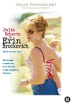 sociology theories erin brockovich Human architecture: journal of the sociology of self-knowledge volume 2 issue 1social theories, student realities article 2 4-1-2003 why i smoke: sociology of a deadly habit.