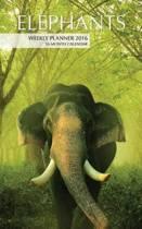 Elephants Weekly Planner 2016