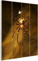 Close-up van spin Hout 40x60 cm - Foto print op Hout (Wanddecoratie)