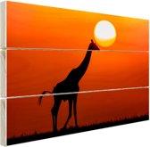 Giraffe bij zonsondergang Hout 120x80 cm - Foto print op Hout (Wanddecoratie)
