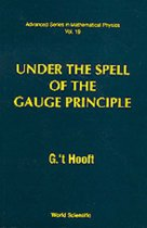Under The Spell Of The Gauge Principle